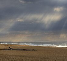 Guadalupe Sun Rays by Cathy L. Gregg