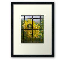 Beauty Through The Window Framed Print