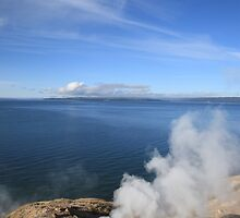 Yellowstone Lake and Geysers by Frank Romeo