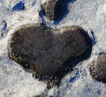 Heart of Stone by Karin  Funke