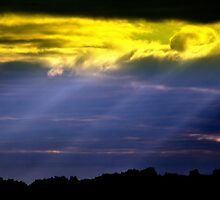 Rapture by Donnie Voelker
