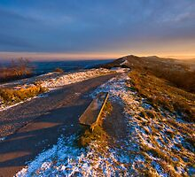 Malvern Hills:Winter Gold by Angie Latham