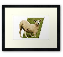 Does my bum look big in this? Framed Print