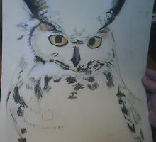 Owl in pastels  by cherie  vize