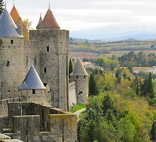 Colors of Carcassonne by Jamie Alexander