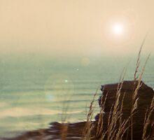 Coastal Brake by Citizen
