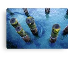 lichen pilings Canvas Print