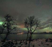 Aurora Borealis and clouds by Frank Olsen