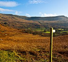 Duddon Valley - Lake District by Trevor Kersley