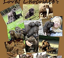 Who loves chocolate ? by Alan Mattison IPA