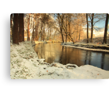 River lazily flows through the woods in winter. Canvas Print