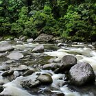 Mossman Gorge by Lindsay Woolnough (Oram)