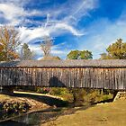 Auchumpkee Creek Covered Bridge 2 by Jim Haley