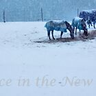 Snowing in the Pastures by Debra Fedchin