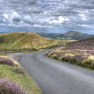 the long mynd road to nowhere  hdr by markbailey74