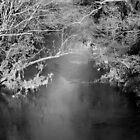 River Wyre  by De Haydock