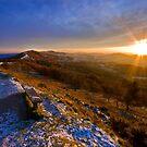 Malvern Hills: Golden Light by Angie Latham