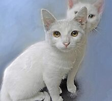 white kittens by jashumbert