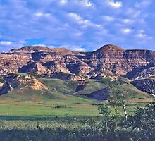 The Alberta Badlands by David Davies