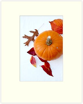 Pumpkin by Jeanne Horak-Druiff
