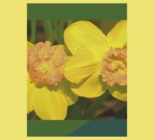 Daffodils by ♥⊱ B. Randi Bailey