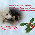 Merry Christmas from Buddy and Scooter by Susan Blevins