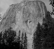 The Rock Sculptures of Yosemite by davesdigis