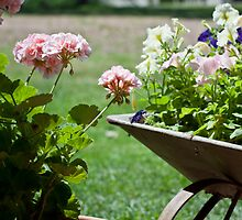 Pot and Barrow by bsn-photography