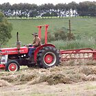 Raking The Hay by Paul Campbell Psychology
