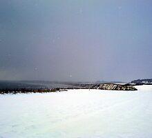 Break in the blizzard by Merice  Ewart-Marshall - LFA
