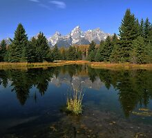 Schwabacher Landing - The Tetons by Stephen Vecchiotti