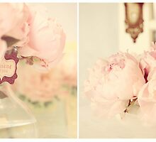 Love Peonies by ╰⊰✿Sue✿⊱╮ Nueckel