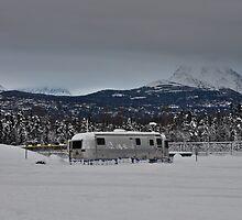 Alaskan Camp Hosts by Bob Moore