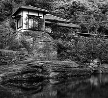 Peaceful abode near the pond by willb