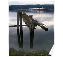 leaning posts and water bomber Poster