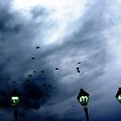 Birds over Jackson Square by UncleBug