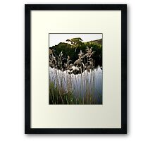 introspection Framed Print