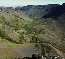Keiger Gorge 2500 Feet Below - Steens Mountain, Harney County, OR by Rebel Kreklow