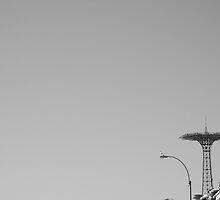 Coney Island Bird by christopher bingham