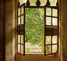 the old window by Shilpa Harolikar
