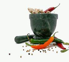 Sensational Spices by elsha
