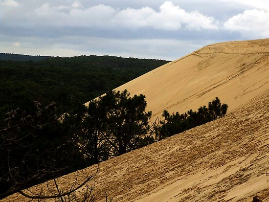 Dune of Pilat - France by Samantha Higgs