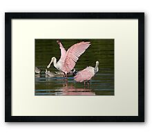 What???   You Don't Wear Pink..???? Framed Print