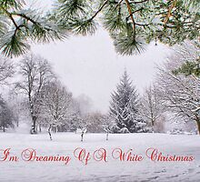 Greeting's Card ~ I'm Dreaming Of A White Christmas by Sandra Cockayne