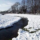 River Ravensbourne, Ladywell Fields Park, Lewisham by John Gaffen