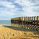 Ventnor Beach Groyne by Rod Johnson