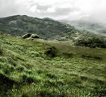 Rolling Hills, Ring of Kerry by Garth  Helms