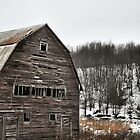 Sullivan County Barn # 1 by Debra Fedchin