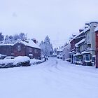 Snowy Whitwell by ANDREW BARKE