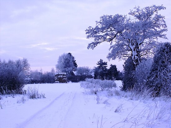 Snowy Village View by charlylou
